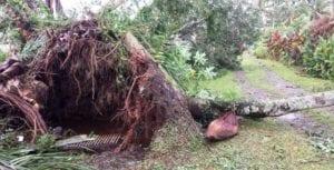 Fiji Cyclone Appeal - Christian World Service
